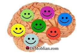 عادت های یک مغز شاد