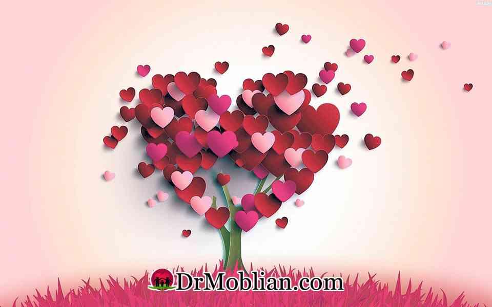 انواع عشق کدامند؟